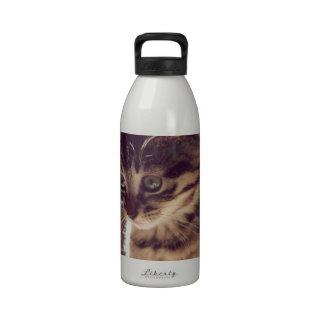 Tabby Kitten Water Bottle