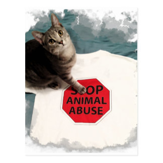 Tabby kitten with a cause Stop Animal Abuse Postcard