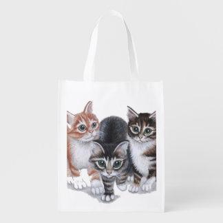 tabby kittens exploring reusable grocery bag