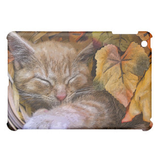 Tabby Kitty Cat Kitten Sleeping ~ Colorful Leaves Cover For The iPad Mini