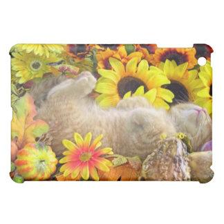 Tabby Kitty Cat Kitten Sleeping, Pretty Sunflowers iPad Mini Covers