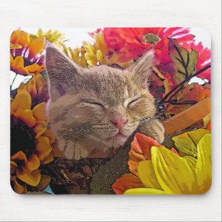 Tabby Kitty Cat Kitten Sleeping, Pretty Sunflowers Mouse Pad