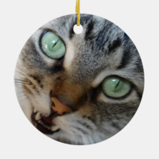 tabby meowing Double-Sided ceramic round christmas ornament