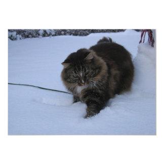 """tabby noruego del marrón del gato del bosque en invitación 5"""" x 7"""""""