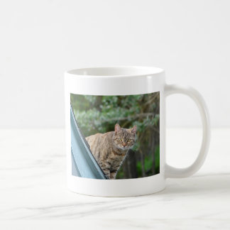 Tabby on Roof Classic White Coffee Mug