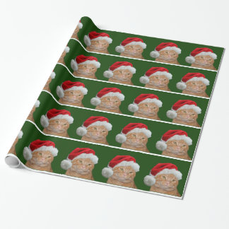 Tabby Santa Claus Gift Wrap