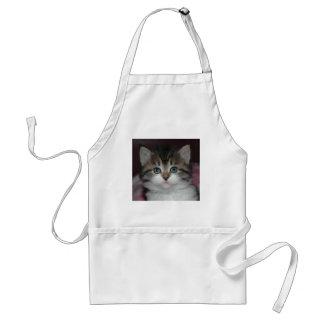 Tabby siberiano/gatito blanco delantales