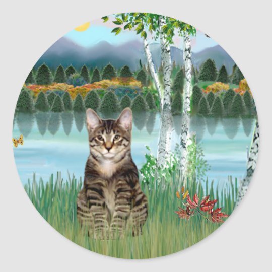 Tabby Tiger Cat  - Birches Classic Round Sticker