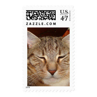 Tabby Tiger Cat Postage