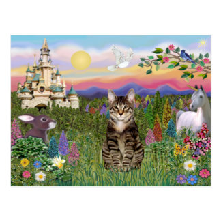 Tabby Tiger Cat  - The Castle Postcard