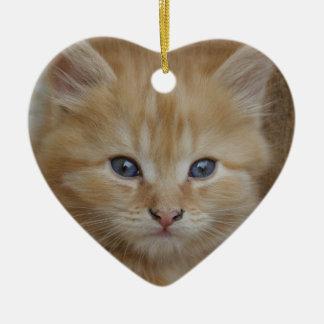 Tabby Tomcat Kitten Ceramic Ornament