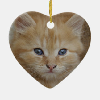Tabby Tomcat Kitten Ornaments