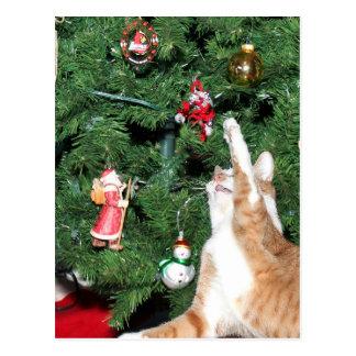 Tabby y árbol de navidad postales