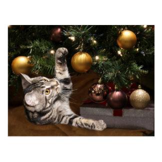 Tabby y árbol de navidad postal