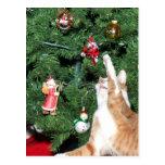 Tabby y árbol de navidad tarjetas postales