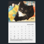 "Tabby's Place calendar<br><div class=""desc"">Enjoy the Tabby's Place cats all year long,  with this delightful calendar filled with some of our wonderful cats.</div>"