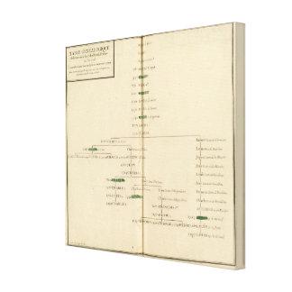 Tabla genealógica, Francia Lona Estirada Galerías