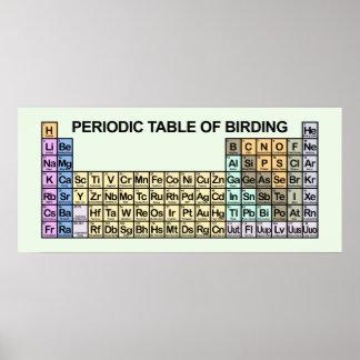 Tabla periódica de Birding Póster