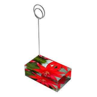 Table Card Holder - Easter Cactus