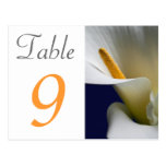 Table Number Card Calla Lily Postcard