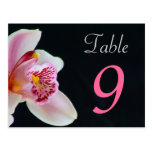 Table Number Card Orchid Post Card