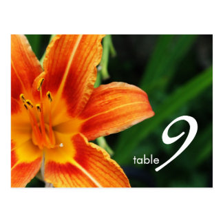 table number card postcards