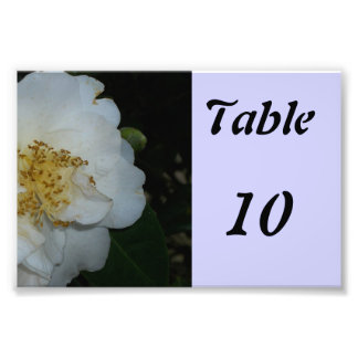 Table Number Flower Photo Print