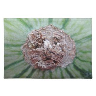 Table set melon sample Melusa Placemat