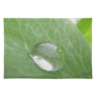 Table set of large water drops on green sheet placemat