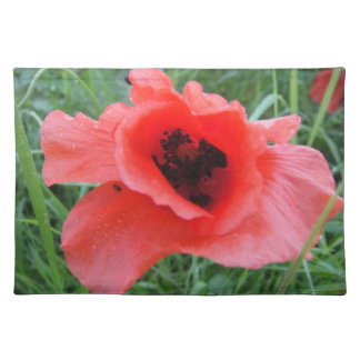 Table set red poppy flower cup placemat