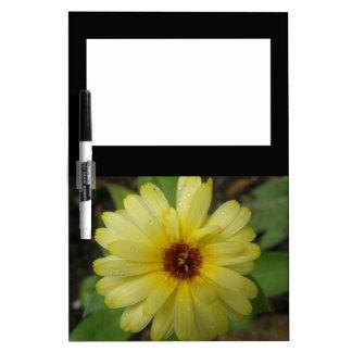 Tablero amarillo de la nota de la maravilla de las pizarra