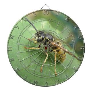 Tablero de dardo macro de Hoverfly
