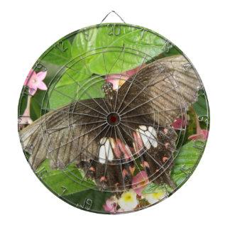 Tablero de dardo macro de la mariposa de Swallowta