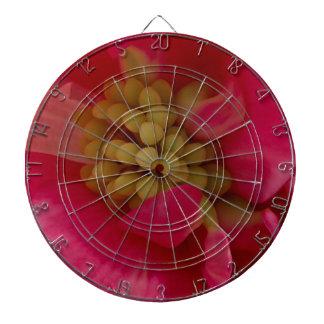 Tablero de dardo macro del estambre rosado de la
