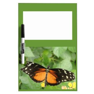 Tablero de la nota de la mariposa de Longwing del  Tableros Blancos