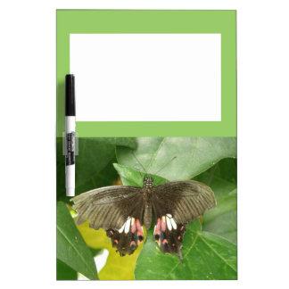 Tablero de la nota de la mariposa de Swallowtail d Tablero Blanco