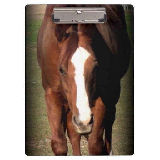 Tablero del caballo