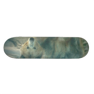 Tablero del oso sk8 patines