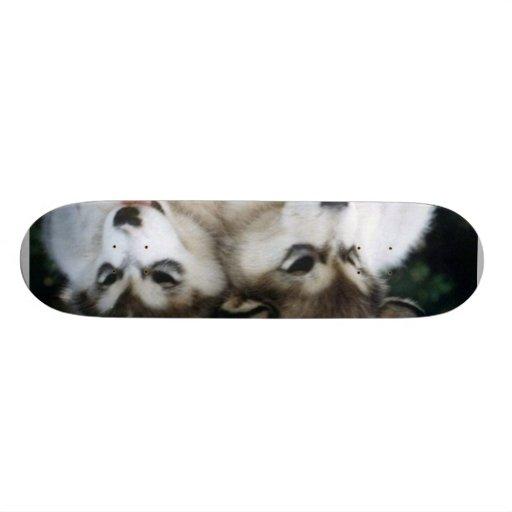 Tablero del perrito del perro monopatín personalizado