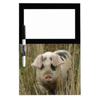 Tablero lindo de la nota del cerdo pizarras blancas
