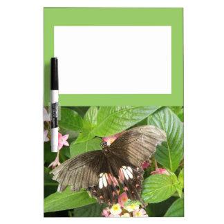 Tablero macro de la nota de la mariposa de Swallow Pizarras Blancas De Calidad