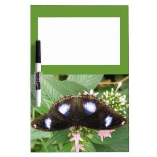 Tablero manchado azul de la nota de la mariposa tableros blancos