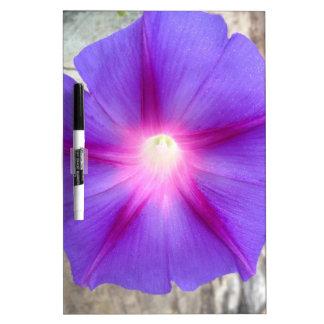 Tablero seco del borrado de la correhuela púrpura  tableros blancos