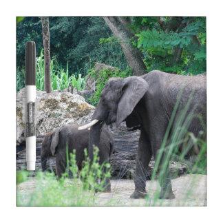 Tablero seco del borrado de la familia del elefant pizarra