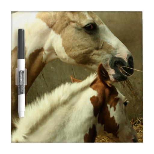 Tablero seco del borrado del caballo gris de Event Pizarras Blancas