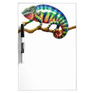 Tablero seco del borrado del camaleón colorido de  pizarras blancas