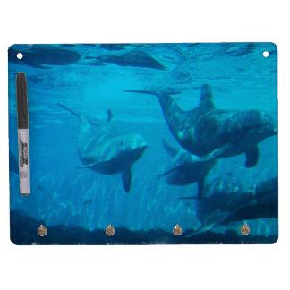 Tablero seco del borrado del juego del delfín pizarras blancas de calidad