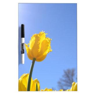 Tablero seco del borrado del tulipán amarillo tableros blancos