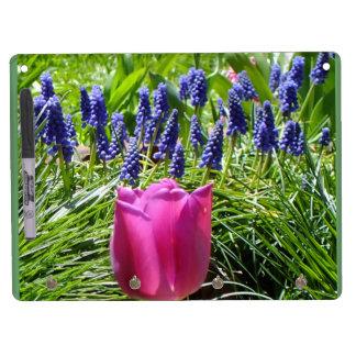 Tablero seco del borrado del tulipán y del Muscari Pizarra