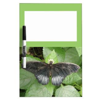Tablero tropical bonito de la nota de la mariposa  pizarras blancas